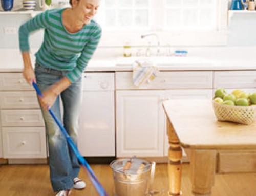 El buen empleador y el buen empleado del servicio doméstico.